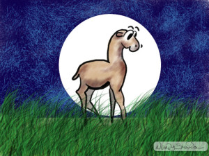 Digital painting of an original cartoon character (Llucy the Llama).
